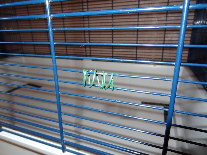 [Vends] cage freddy 2 max Dsc02518