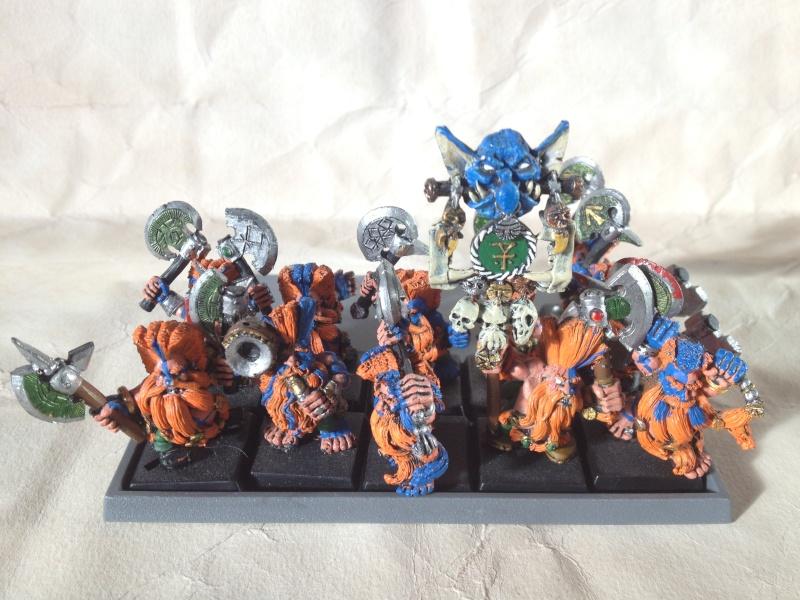 [Armée] Clan Mèche-brun (de Karaz Rhun)  Img_2711
