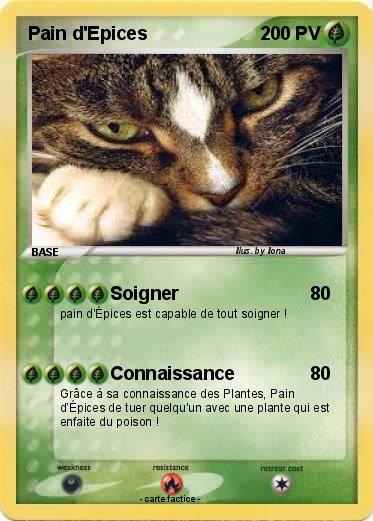 Boutique de Fausses Cartes Pokémon et d'Userbars Pain_d10
