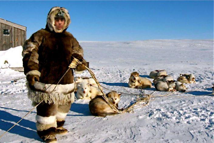 Photoshop fun Arctic10