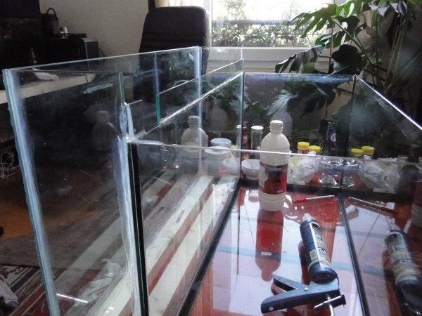 200L asiatique filtration aquaponique Dsc02514