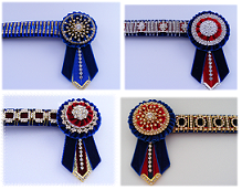 Bling Browbands and Accessories 4_brow12