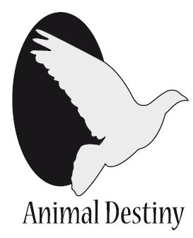 Animal Destiny Animal10