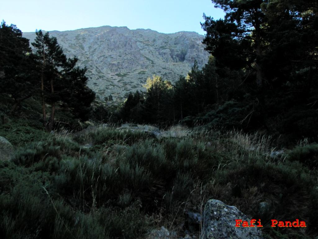 20200829 - CABEZA DE HIERRO MAYOR por Los Pulmones 00956