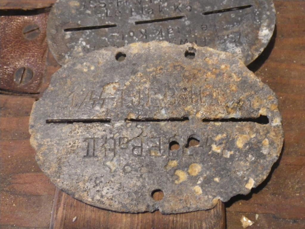 plaque suspect Imgp0110