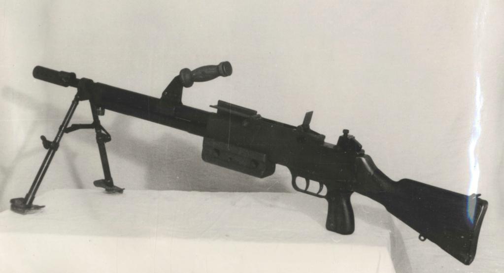 FM 24-29 M 65... une arme de précision 1fm_2410