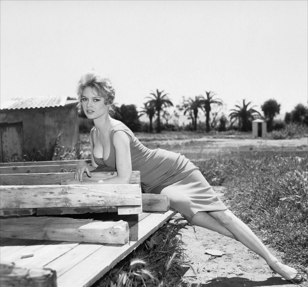 Brigitte Bardot 13076911