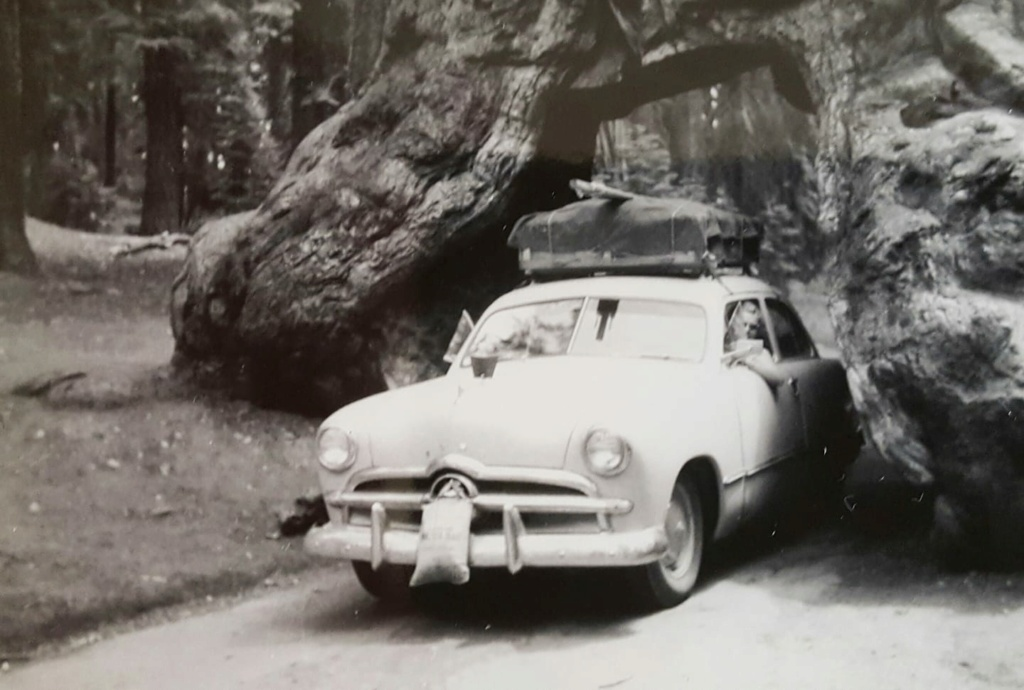 fifties & early sixties cars in situation - Vintage pics - Page 5 13500910