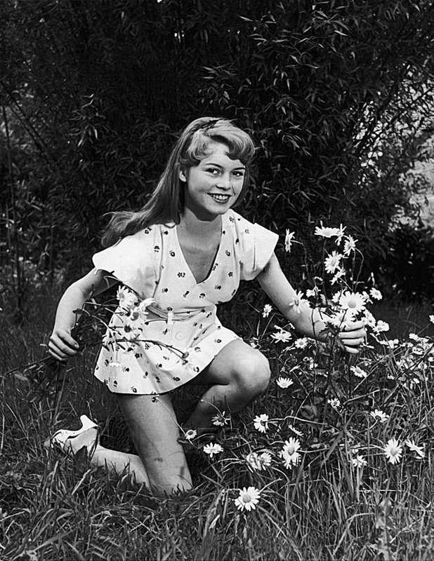 Brigitte Bardot 37a54410