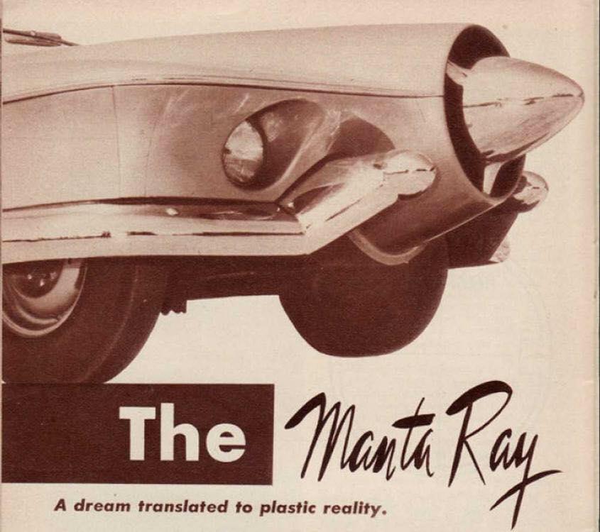 Manta Ray 62538010