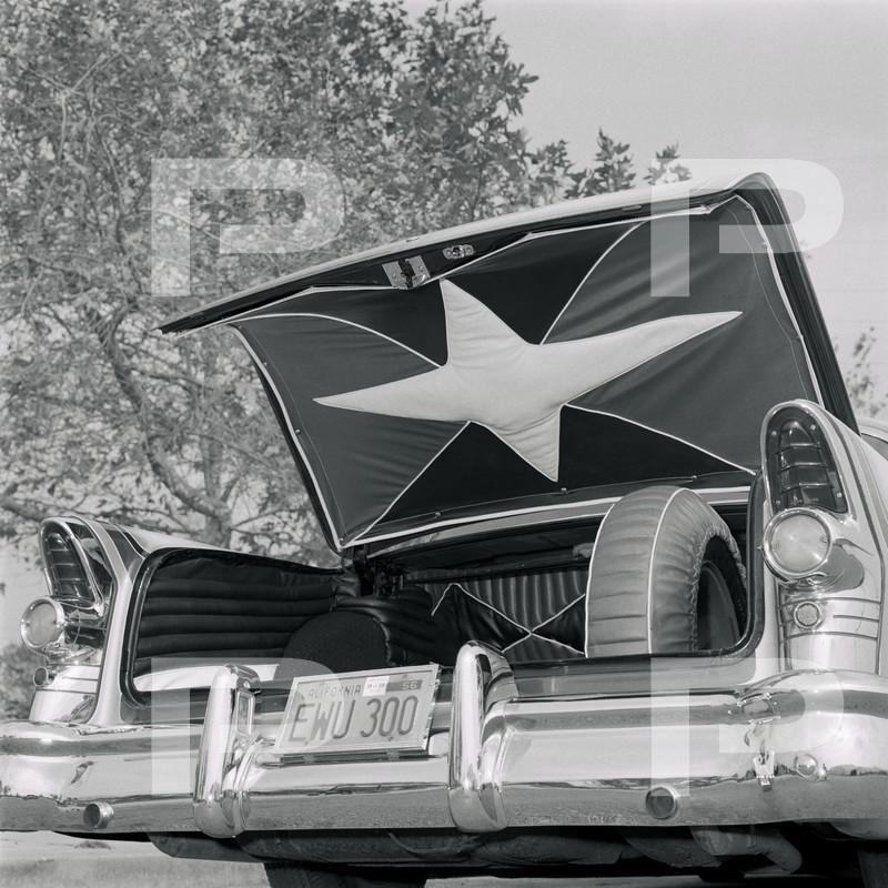 1955 Buick - Candy Kane - Delmar McCutcheon 63241010