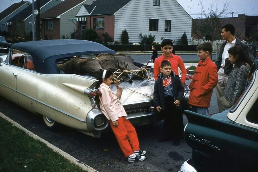fifties & early sixties cars in situation - Vintage pics - Page 2 94784210
