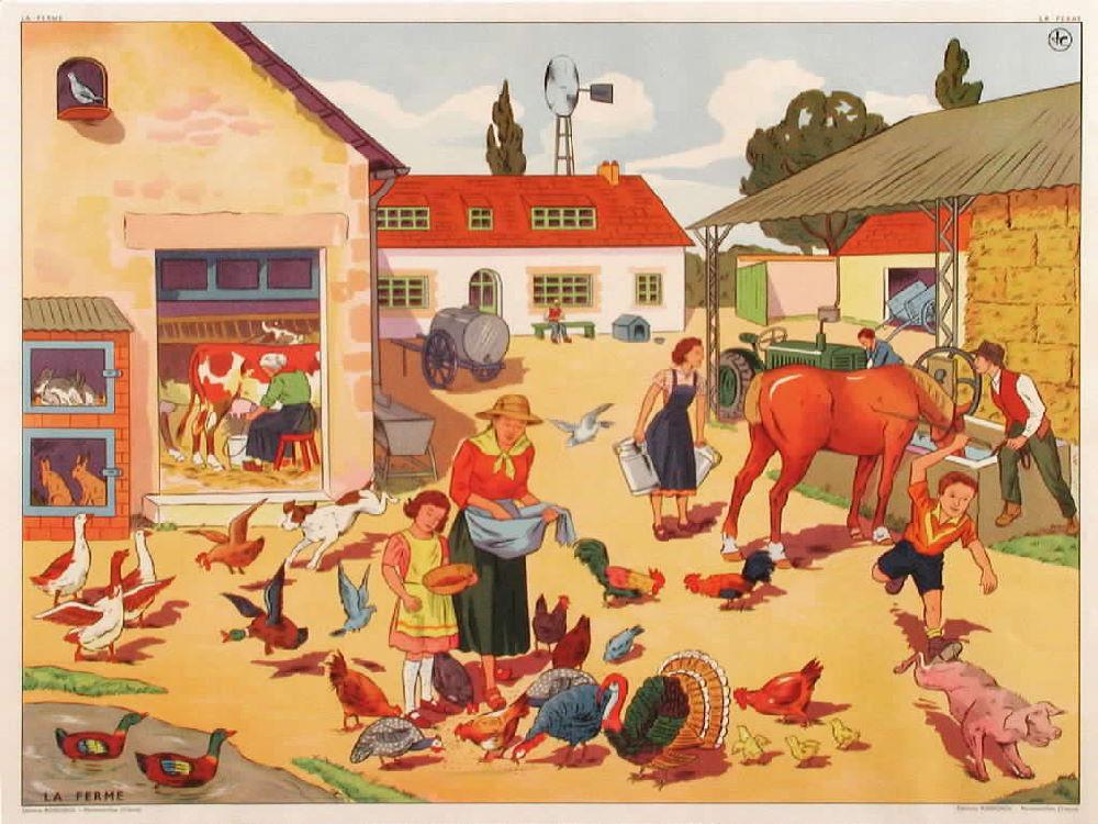 Affiches (tableaux)  pédagogiques Editions Rossignol 1946 - 1970s 9be99d10