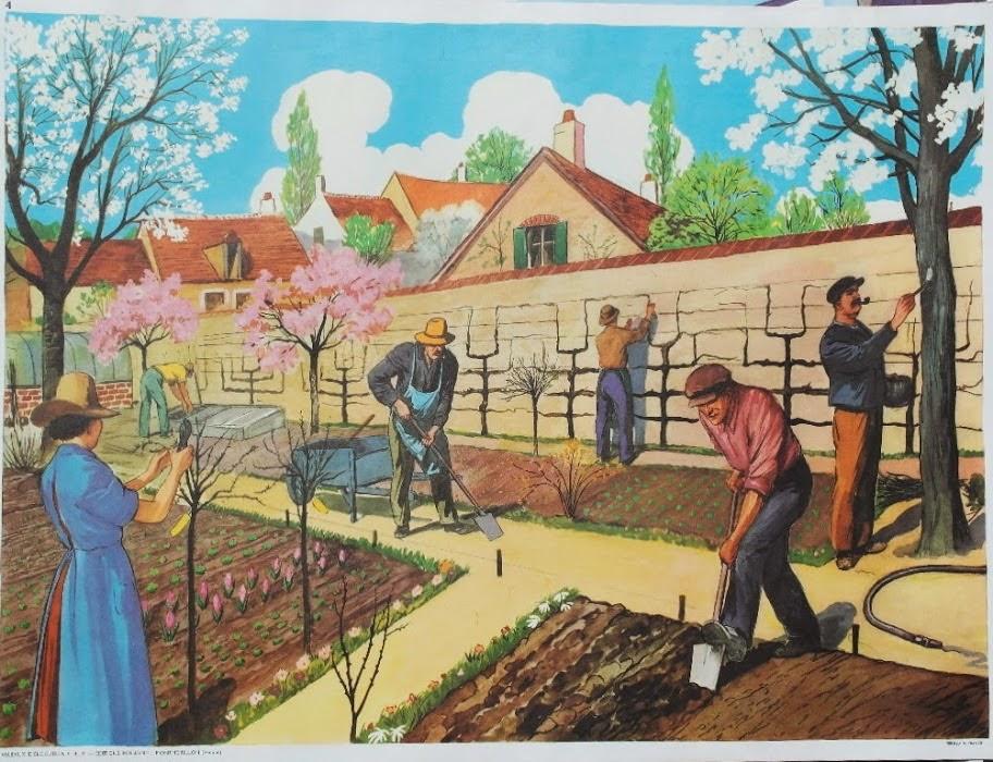 Affiches (tableaux)  pédagogiques Editions Rossignol 1946 - 1970s Affich11