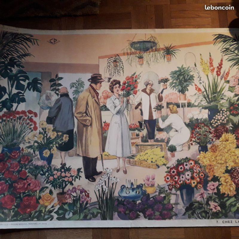Affiches (tableaux)  pédagogiques Editions Rossignol 1946 - 1970s B471ec10