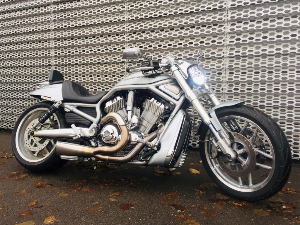 Harley Davidson V-Rod 10th anniversary edition(VENDUE) V-rod12