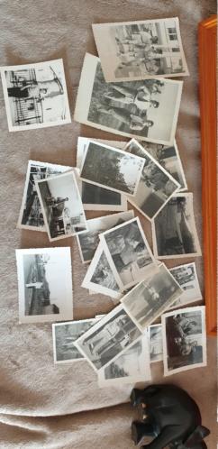 Diplôme, médaille, album photo indochine 16217610