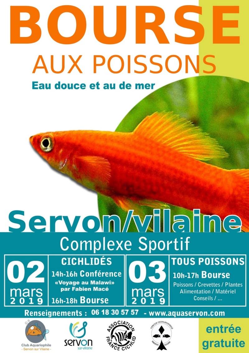 Bourse de Servon sur Vilaine (2 et 3 mars 2019)   12-aff11