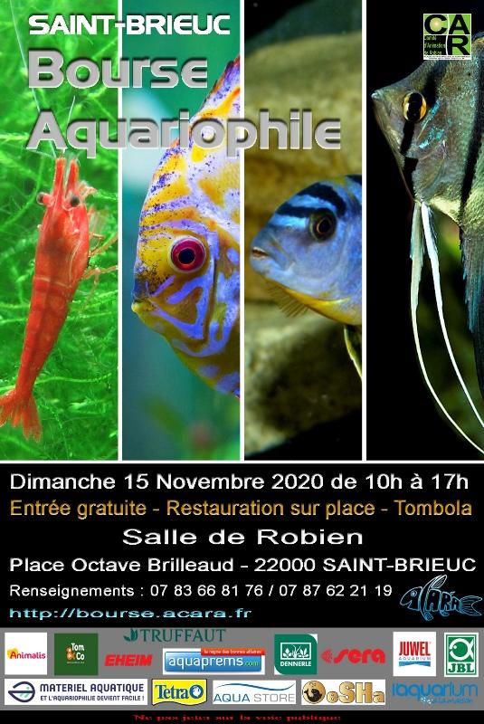 Bourse aquariophile de Saint Brieuc (15 11 2020)   Bourse11