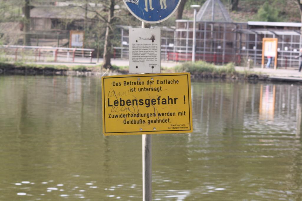 """Heute am """"Lake Seiler""""  - Seite 3 Img_6811"""