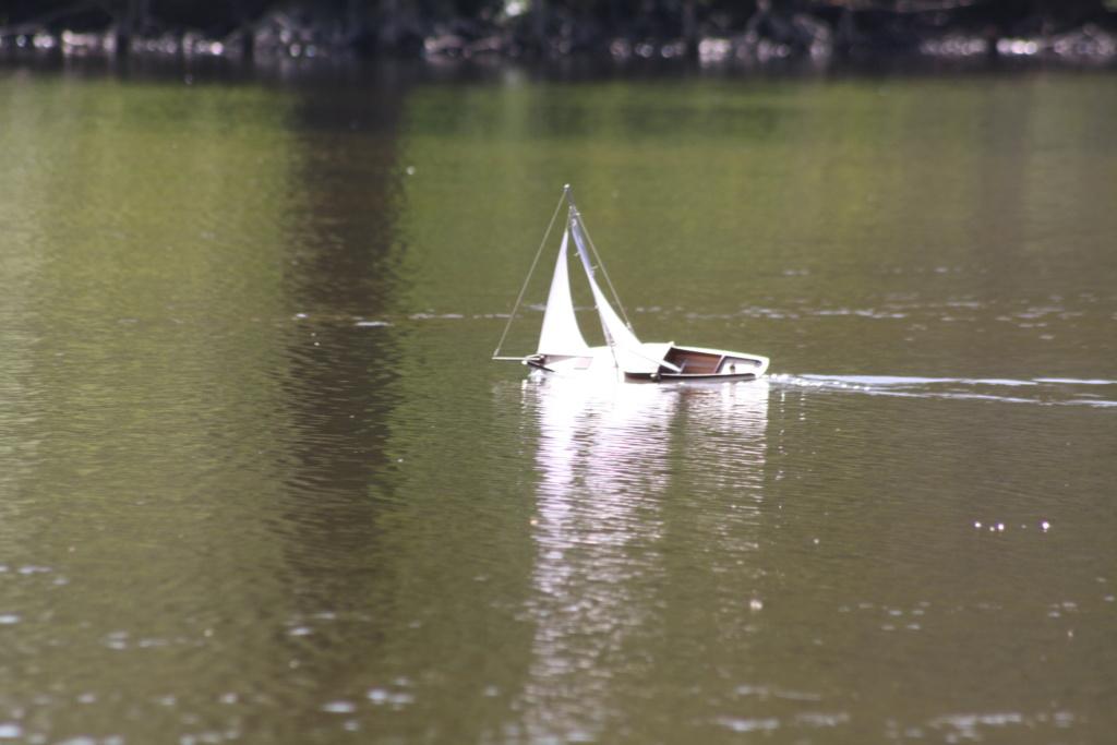 """Heute am """"Lake Seiler""""  - Seite 3 Img_6817"""