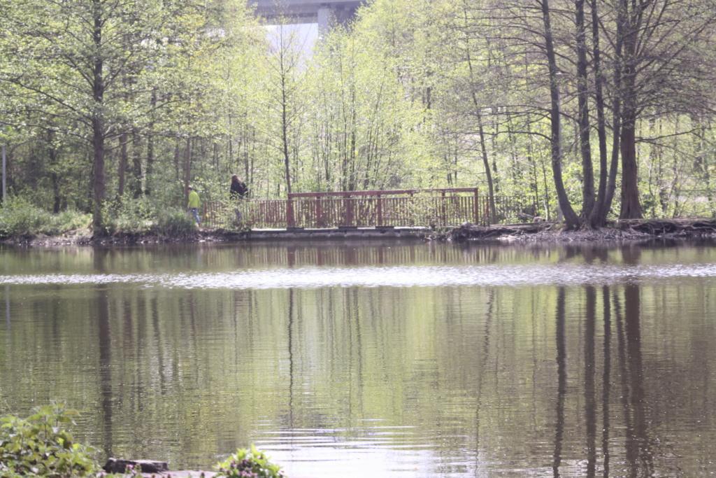"""Heute am """"Lake Seiler""""  - Seite 3 Img_6824"""