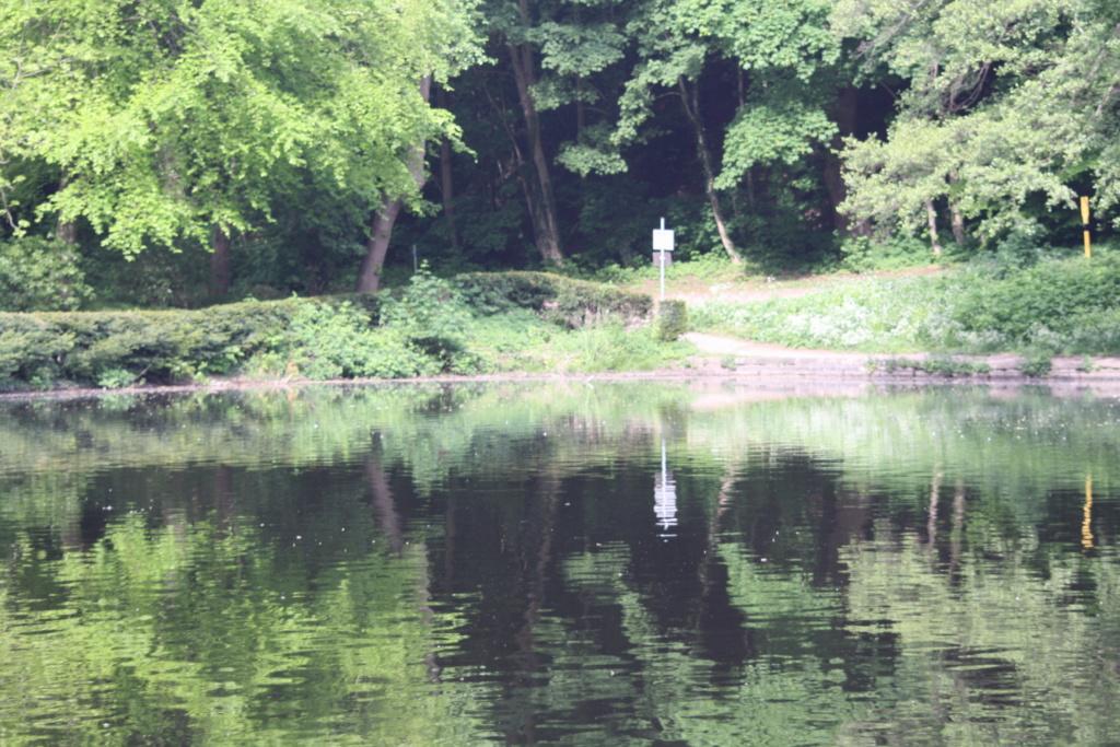 """Heute am """"Lake Seiler""""  - Seite 3 Img_7018"""