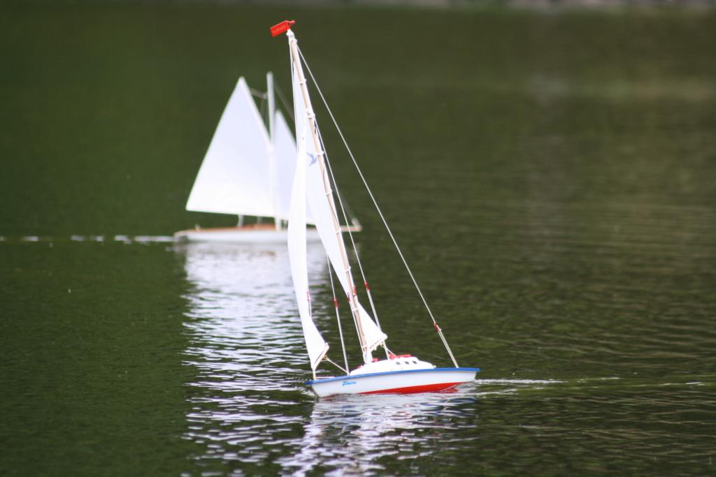 """Heute am """"Lake Seiler""""  - Seite 3 Img_7112"""