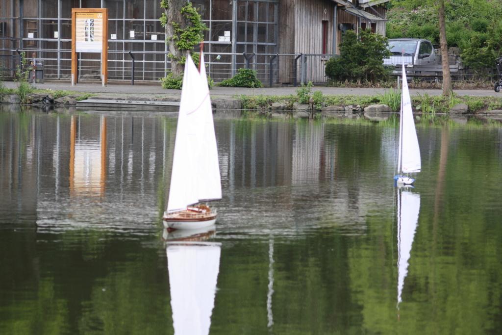 """Heute am """"Lake Seiler""""  - Seite 3 Img_7216"""
