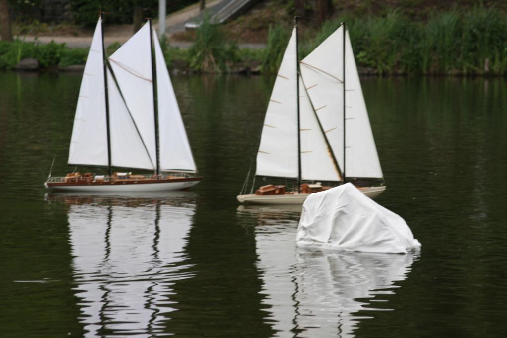 """Heute am """"Lake Seiler""""  - Seite 3 Img_7411"""