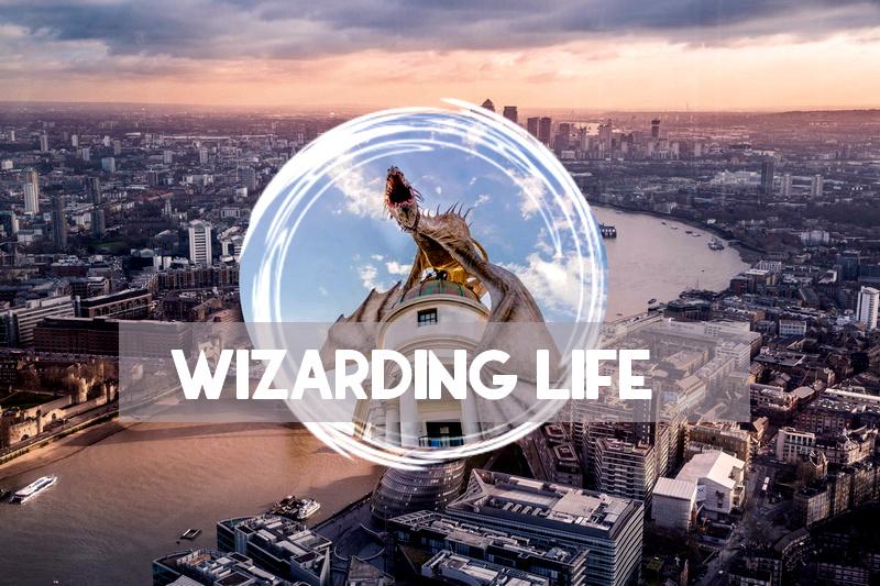 Wizarding life
