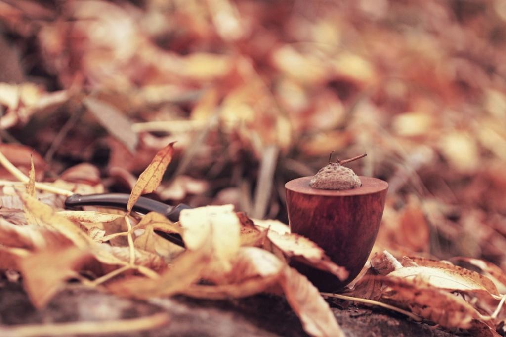 Fumées du 5 Novembre, quels tabacs accompagnent votre journée? Img_5433