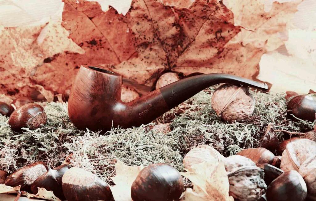 Fumées du 5 Novembre, quels tabacs accompagnent votre journée? Saint_49