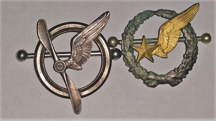 Insignes personnel navigant et observateur aerien 1ere Guerre Insign10