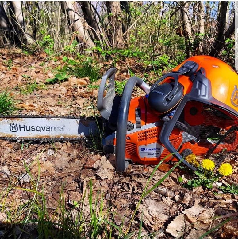 foto dal bosco, i nostri mezzi all'opera - Pagina 5 26649010