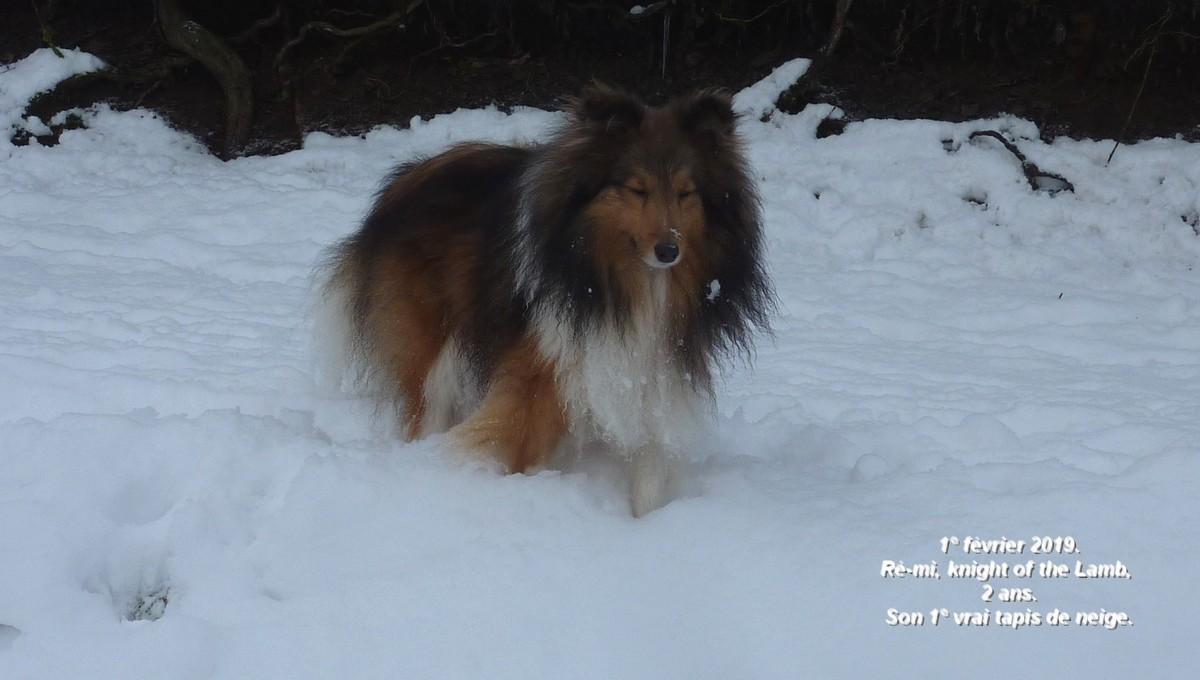 2019: Remi adore la neige! B10