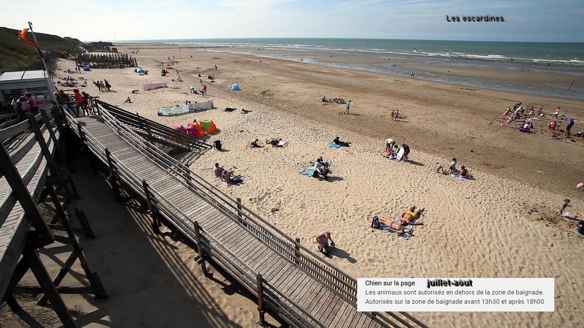 Plages autorisées aux chiens à la côte d'Opale et en Belgique. Les_es13