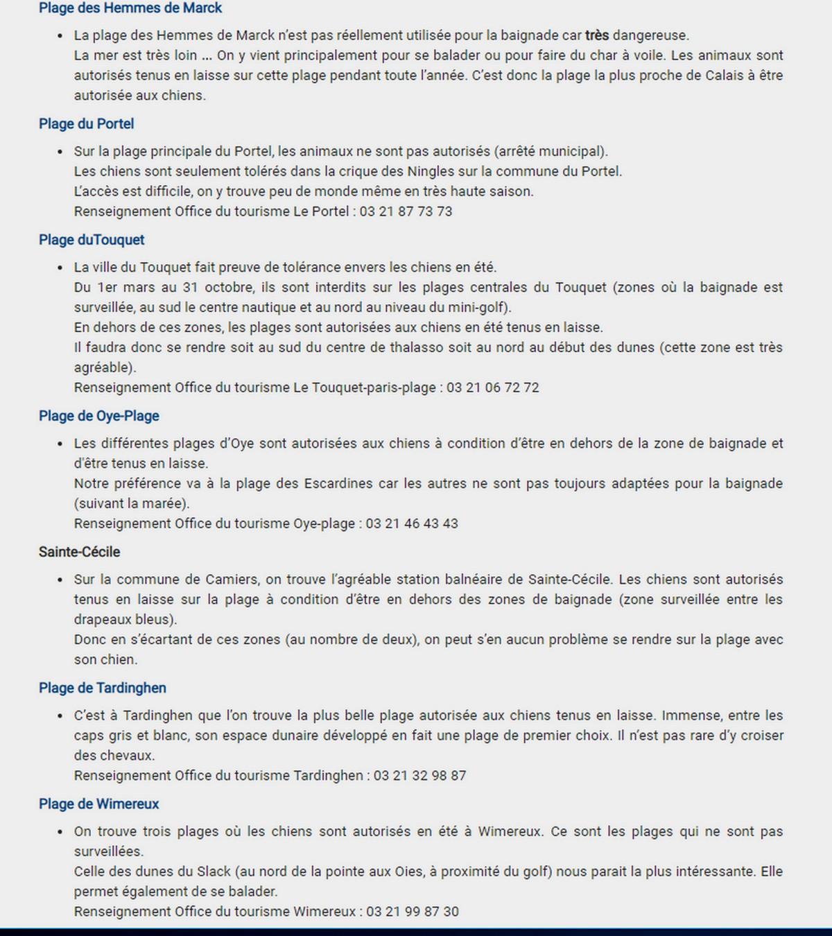 Plages autorisées aux chiens à la côte d'Opale et en Belgique. Plages10