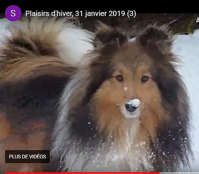 2019: Remi adore la neige! Remi210