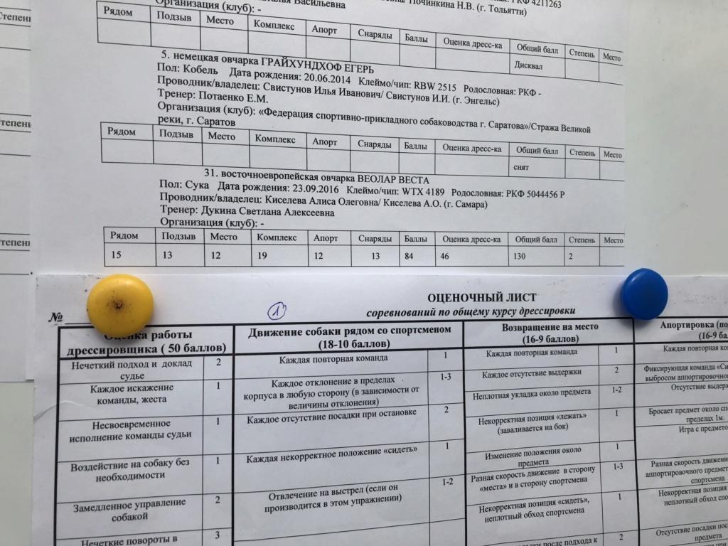 ВОСТОЧНО-ЕВРОПЕЙСКАЯ ОВЧАРКА ВЕОЛАР ВЕСТА - Страница 10 Bf625310