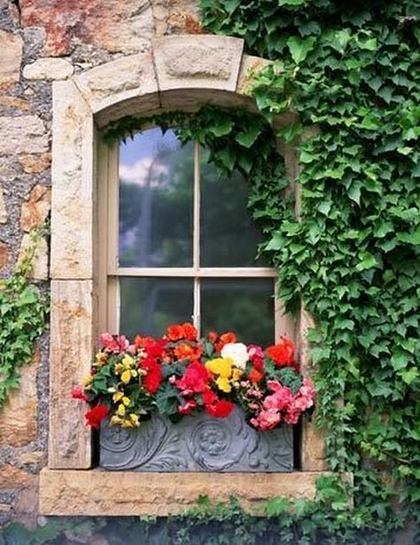 Ukrašeni prozori 2e6e3a11