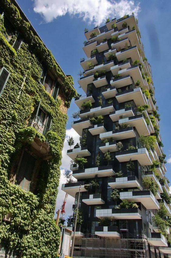 """""""Zelena""""Arhitektura 4196ef10"""