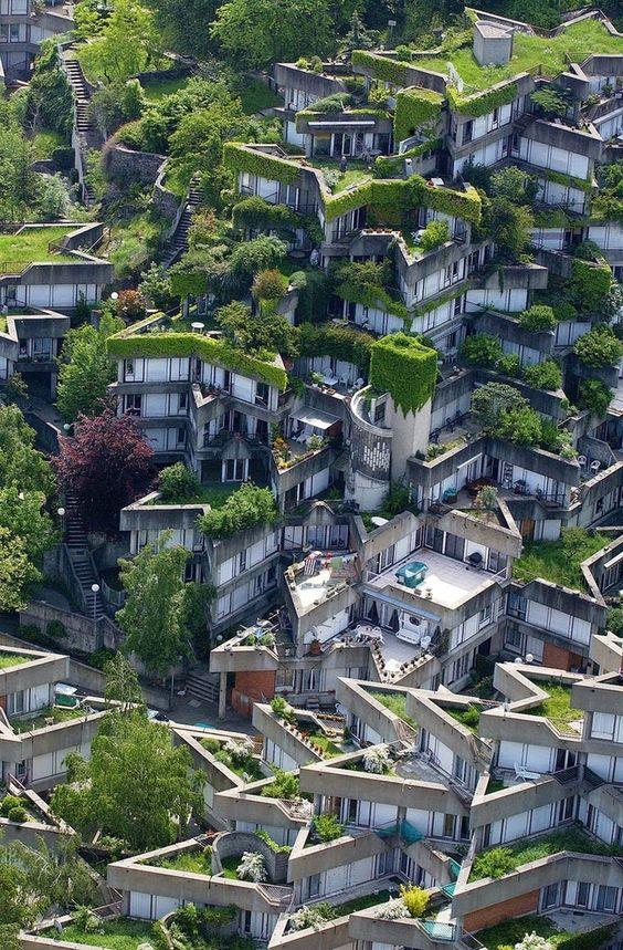 """""""Zelena""""Arhitektura 4c4da010"""
