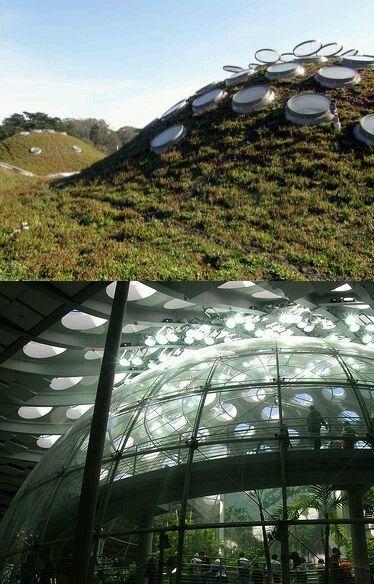 """""""Zelena""""Arhitektura - Page 2 545b9a10"""