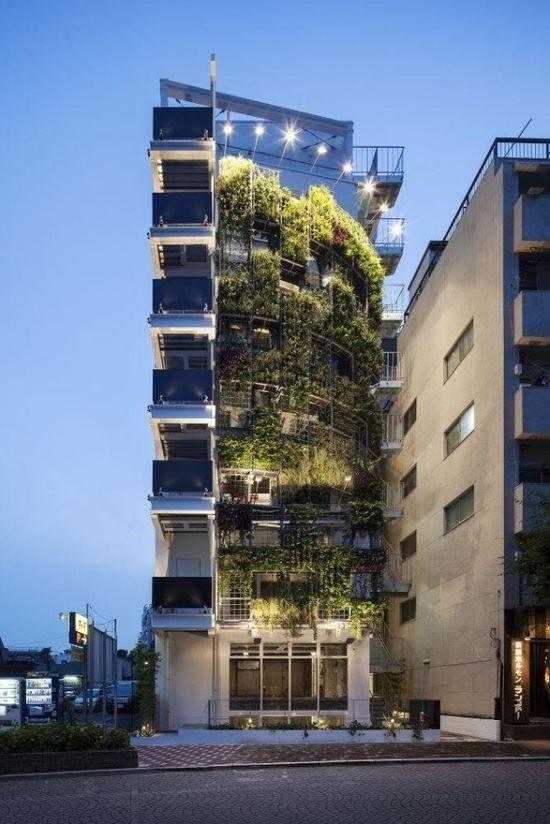 """""""Zelena""""Arhitektura 5bc10e10"""