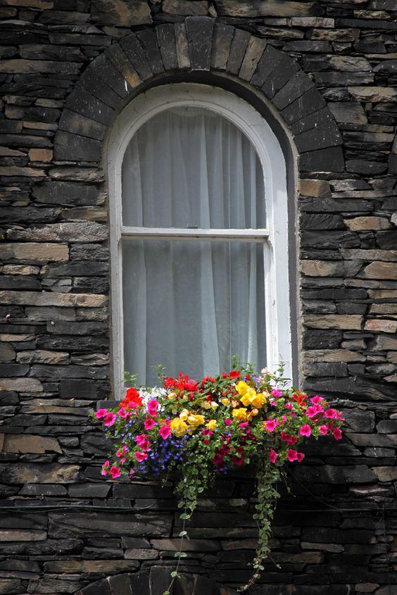 Ukrašeni prozori 5ff06210