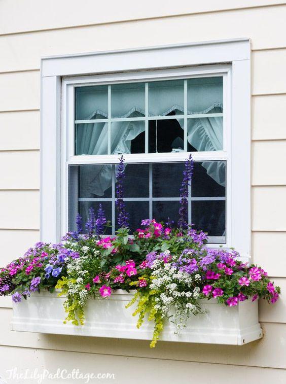 Ukrašeni prozori C40c6010