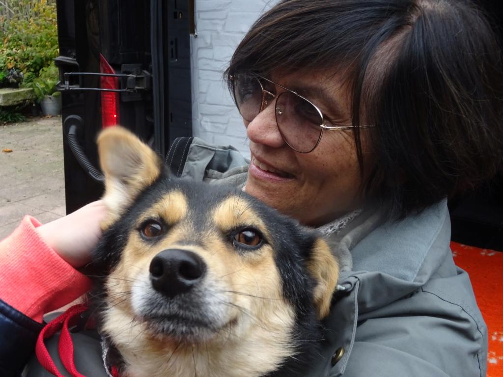 Nashka (ex-Nikita) - femelle - fourrière de Târgu Frumos - réservée adoption (80) Dsc00220