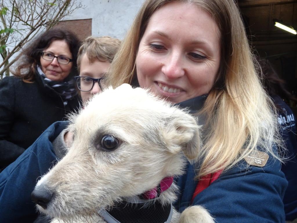 Gioia (ex-Pantoufle) - femelle - adoptée (57) Dsc00229