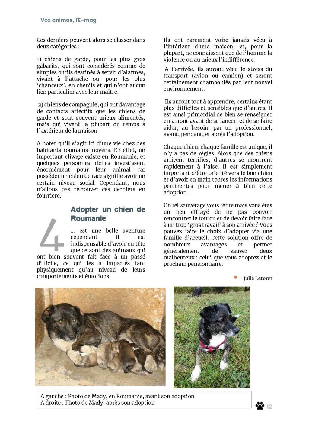 Pourquoi adopter un animal via Inima Emag1413